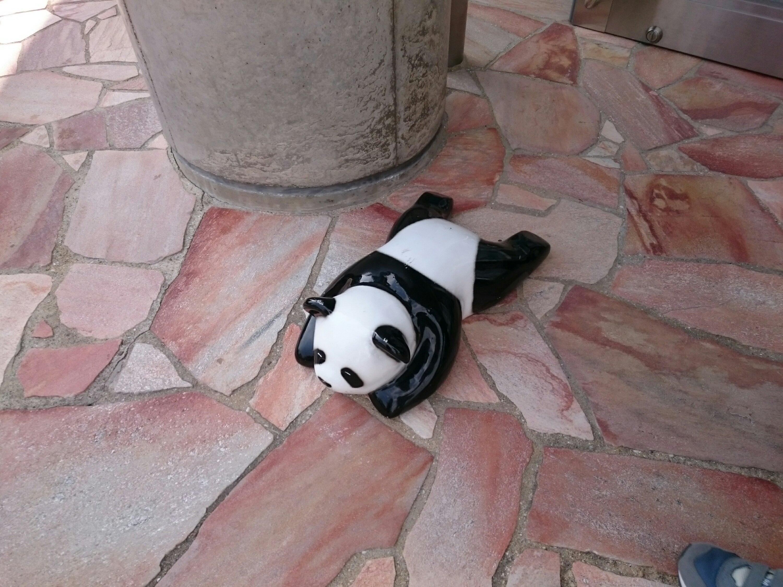 足元にパンダ